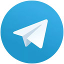 Telegram coin icon